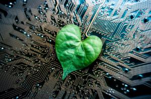 Ekologia na wyciągnięcie ręki – jak technologia pozwala każdemu zadbać o planetę?