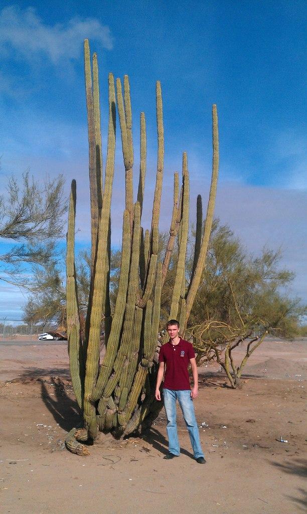 Blog_Mexico_Chernysh
